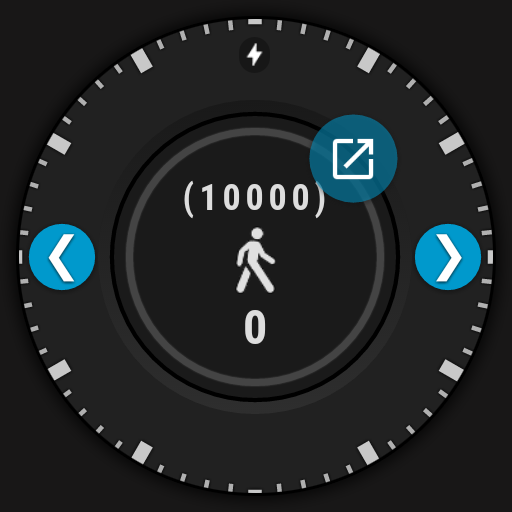 step counter maximized
